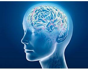 neurofeedback-frontpage